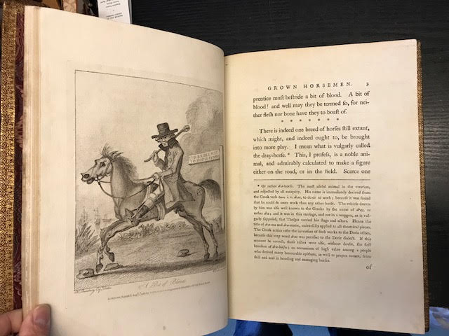 Image for An Academy for Grown Horsemen containing the completest instructions for walking, trotting, cantering, galloping, stumbling and tumbling. Illustrated with copper plates, and adorned with a portrait of the Author [TOGETHER WITH] Annals of Horsemanship