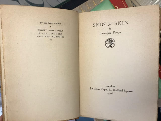 Image for Skin to Skin