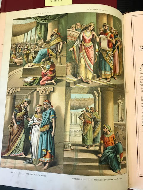 Image for The Bible Picture Book: Coloured Picture Book For the Nursery