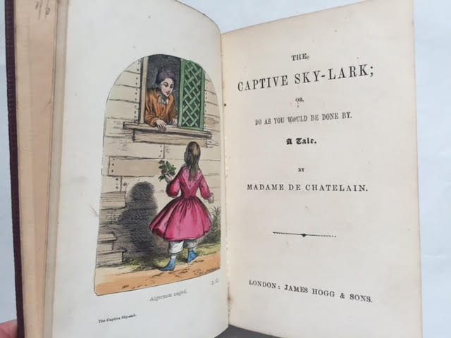 Image for The Captive Sky-lark; or Do as You Would be Done By a Tale