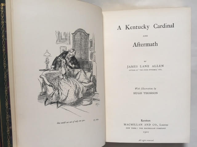 Image for A Kentucky Cardinal and Aftermath