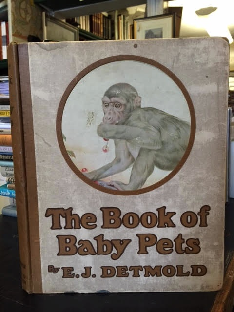 Image for The Book of Baby Pets