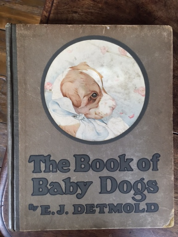Image for The Book of Baby Dogs