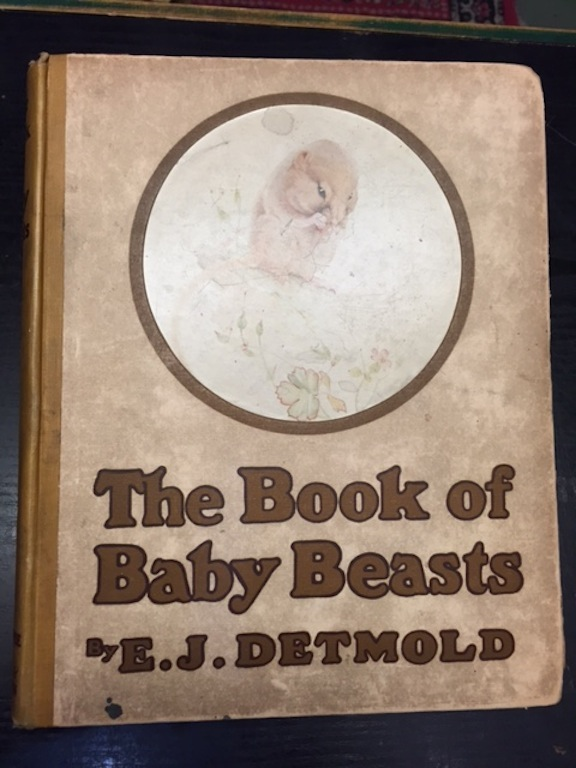 Image for The Book of Baby Beasts