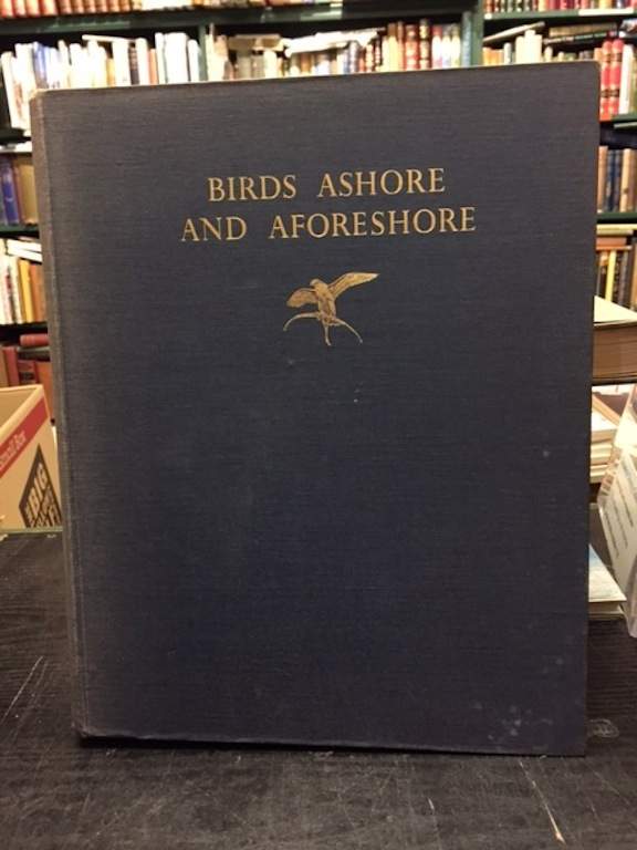Image for Birds Ashore And A-Foreshore