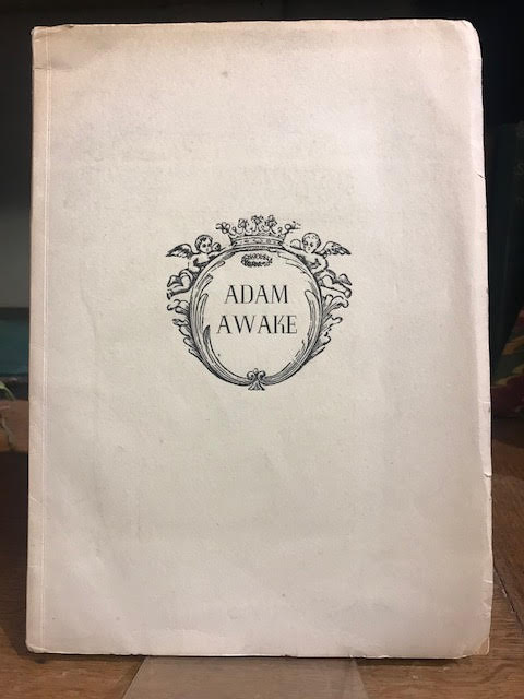 Image for Adam Awake
