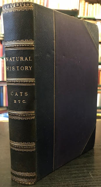 Image for A Hand-Book to the Carnivora : Part I: Cats, Civets, and Mungooses. Lloyd's Natural History