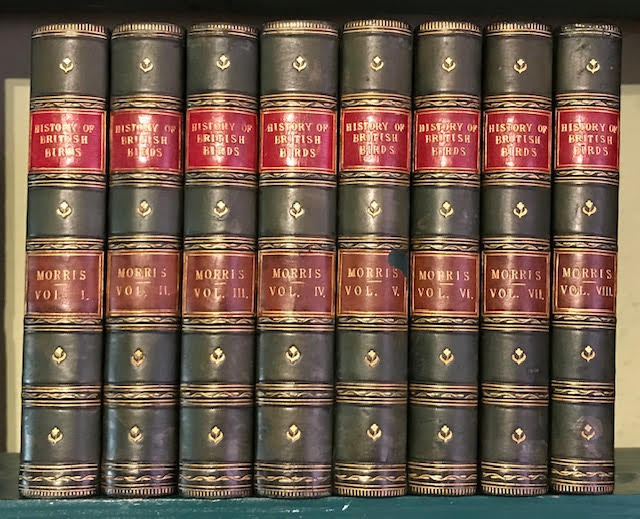 Image for A History of British Birds. In eight volumes complete