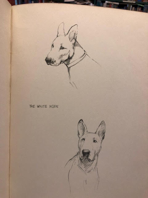 Image for Just Dogs : Sketches in Pen & Pencil