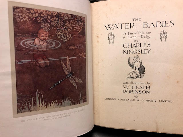 Image for The Water-Babies : A Fairy Tale for a Land-Baby