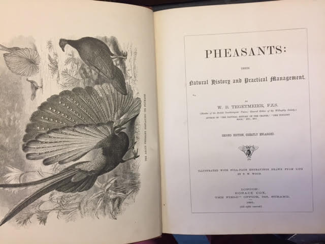 Image for Pheasants: Their Natural History and Practical Management