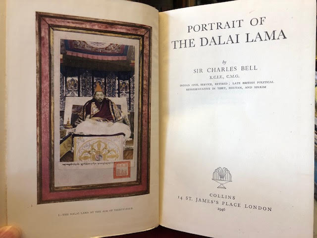 Image for Portrait of the Dalai Lama